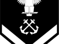 E-04_Petty_Officer_3rd_Class-2030