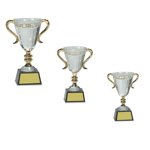 Crystal Trophy Cup on Black Base with gold handles
