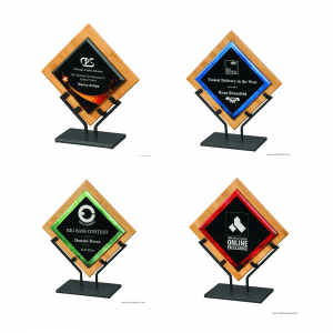 Galaxy Acrylic Awards/Bamboo Plaques with Iron Stand