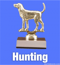 Hunting Trophies
