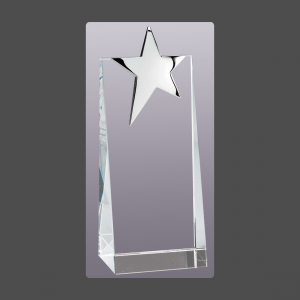 "2 3/4"" x 7"" Silver Star Crystal Tower"