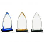 Oval Impress Acrylic Awards