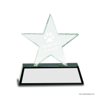 Clear Crystal Star on Black Pedestal Base