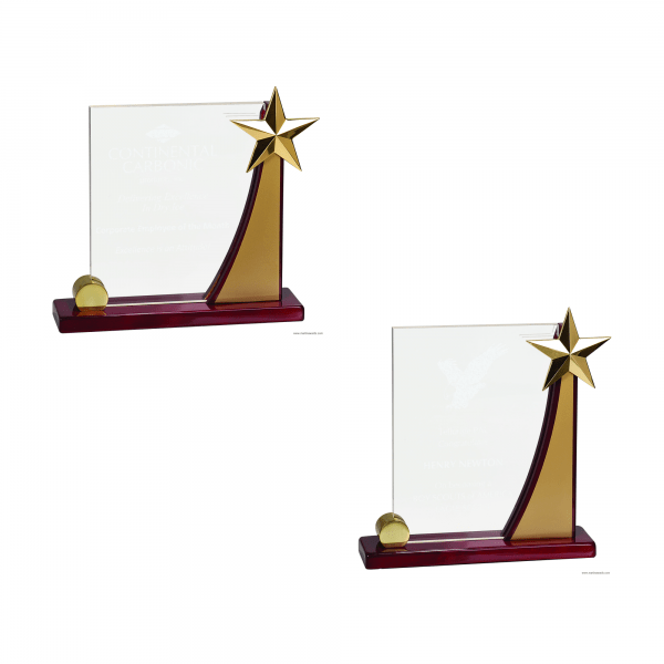 Swooping Rising Star Acrylic Award