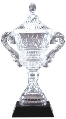 Crystal Vase with Presentation box