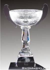 """10 1/2"""" x 15"""" Genuine Glass Awards Cup With Base"""