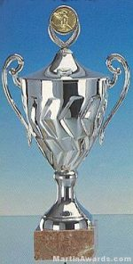 Silver Finish Trophy Cup On Marble Base