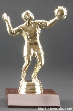 Male Volleyball Trophy