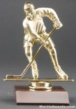 Male Hockey Trophy
