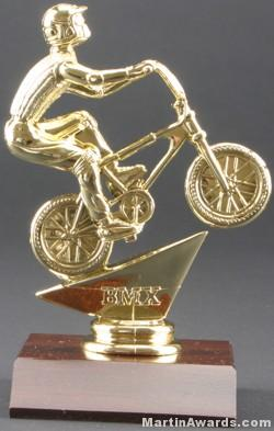 BMX Trophy 1