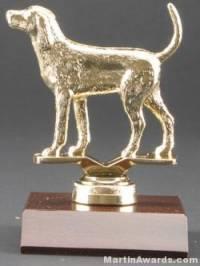 Coon Hound Trophy