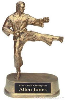 Male Karate Gold Resin Trophy 1