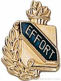 "3/8"" Effort School Award Pins"