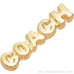 "1 1/8"" Coach Chenille Letter Insert Pins"