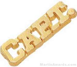1 1/4″ Captain Chenille Letter Insert Pins 1